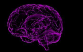 ¿Cuáles son los síntomas de un derrame cerebral?