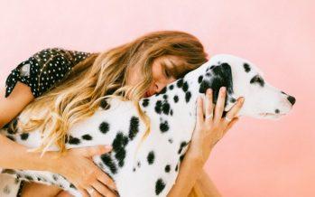 Alzhéimer: Música y animales para mejorar la calidad de vida de los pacientes