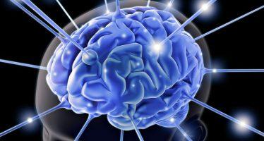Investigadores crean un dispositivo que convierte las señales cerebrales en frases fluidas