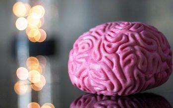 Investigadores descubren una nueva vía para frenar los tumores cerebrales más agresivos