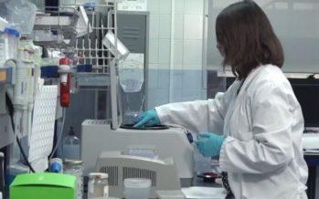 Identifican una nueva diana terapéutica para los pacientes con cáncer de próstata resistente a la castración metastásica