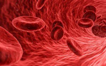 Investigadores afirman que la falta de oxígeno en tumores promueve la metástasis