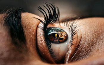 Investigadores desarrollan una córnea artificial que podría utilizarse para trasplantes