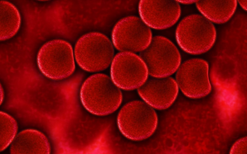 La anemia afecta al 24,8% de la población mundial