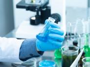 Madrid financia el proyecto de un investigador que ingresa en la Academia Nacional de Ciencias de EE.UU.