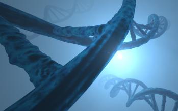 Científicos consiguen identificar nuevos genes asociados al trastorno bipolar