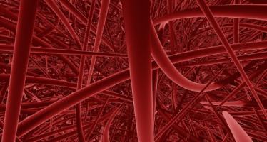 Localizan un nuevo compuesto químico que ayuda a dilatar los vasos sanguíneos