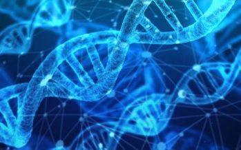 Una nueva técnica permite editar el ADN para evitar enfermedades