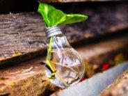 DKV impulsa más de 25 proyectos de innovación
