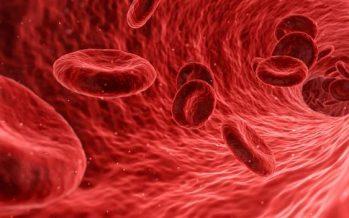Hipercolesterolemia familiar: ¿Quién puede padecerla?