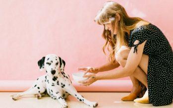 Los perros podrían detectar por medio del olfato el cáncer a tiempo