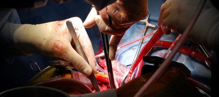 Los hospitales universitarios de Torrevieja y Vinalopó, a la vanguardia en la formación y simulación en cirugía cardiovascular