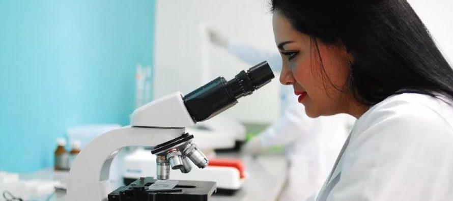 CSIC halla una vía para frenar los tumores impidiendo su adaptación a la falta de oxígeno