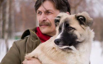 Tumores en la próstata: Los perros pueden detectarlos con más de un 90% de eficacia