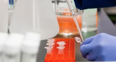 Investigadores desarrollan un virus que mata el cáncer de colon