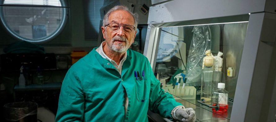 """Enjuanes: """"Si un paciente se ha curado lo estándar sería que no se volviera a infectar"""""""
