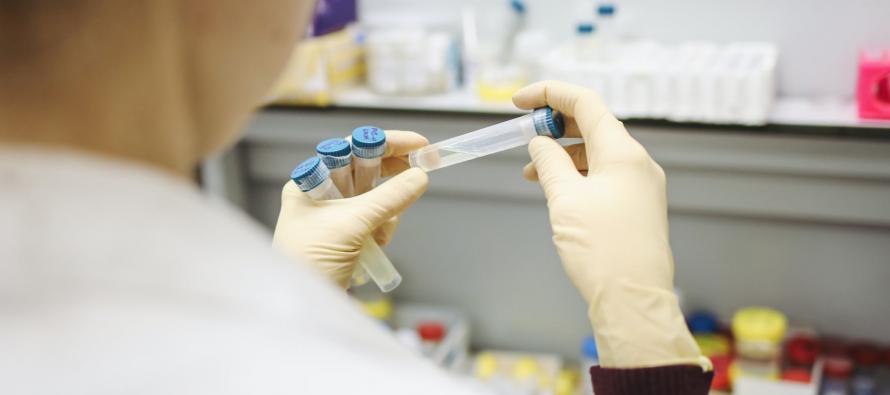 Quistes hepáticos y renales: Desarrollan nuevos fármacos para bloquearlos