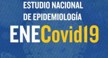 Covid-19: El 5% de la población ha desarrollado anticuerpos
