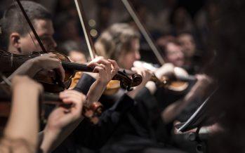 Músicos de todo el mundo luchan contra la Covid-19
