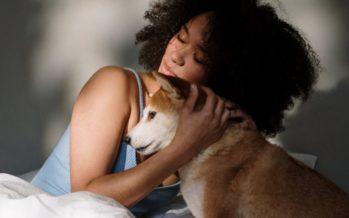 La terapia con perros es beneficiosa en trastornos de conducta alimentaria