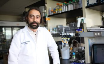"""García-Sastre: """"Estaremos vacunados de forma masiva a mediados del año que viene"""""""