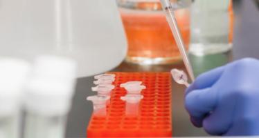 Más del 15% de los pacientes recuperados de Covid-19 podrían seguir siendo portadores del virus