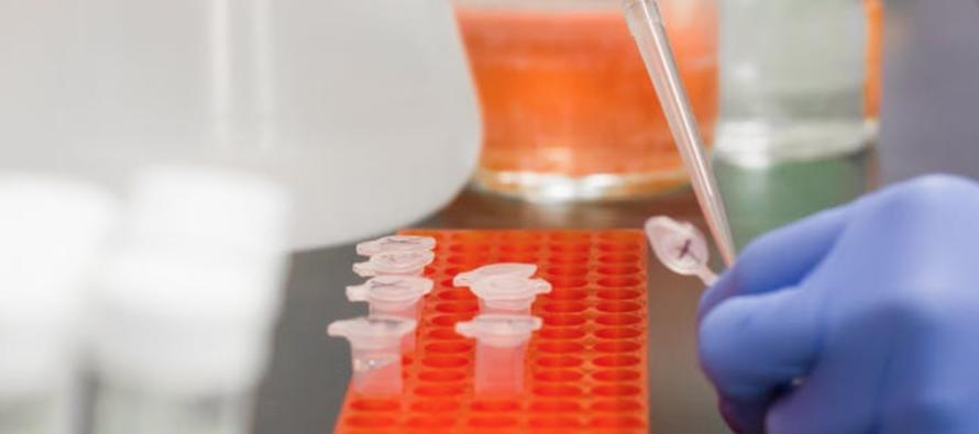 Crean el primer PCR de saliva que se hace desde casa