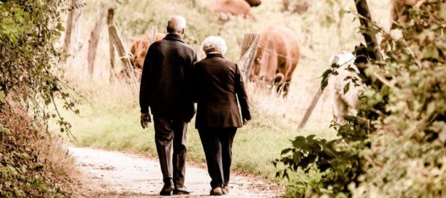 Las personas mayores, más afectadas por el estrés térmico y la contaminación acústica