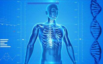 Más del 80% de la población sufrirá dolor de espalda en algún momento de su vida