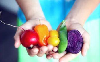 ¿Qué alimentos son clave para superar la astenia otoñal?