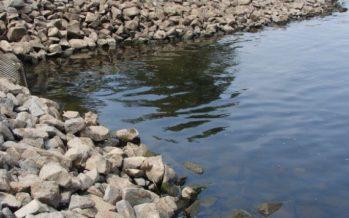 El análisis de las bacterias de las aguas residuales ayuda a predecir la propagación del Covid-19