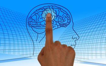 En marcha la 2ª edición de 'Brains4Brains'