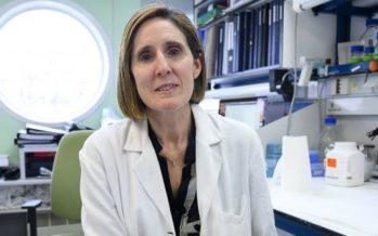 """Isabel Sola: """"No somos conscientes de que los coronavirus tienen la capacidad de volver a emerger"""""""