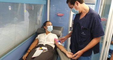 Campaña de donación sanguínea especial Navidad