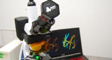 DOIT Micro 3D: tecnología accesible para ver el mundo microscópico
