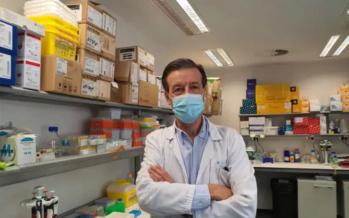 Anticuerpo para frenar el crecimiento de tumores