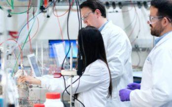 Investigadores suizos hallan un anticuerpo eficaz contra todas las variantes de covid