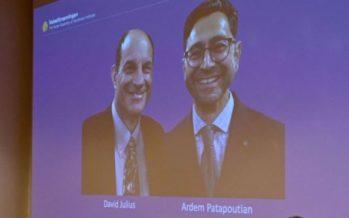 David Julius y Ardem Patapoutian, ganadores del Nobel de Medicina 2021